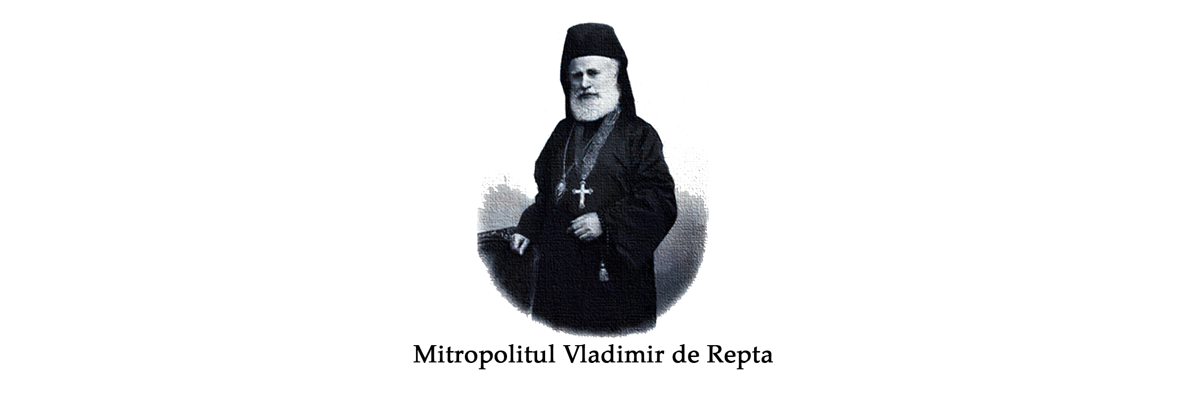 vladimir_de_repta_site
